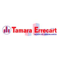 Tamara Errecart Negocios Inmobil