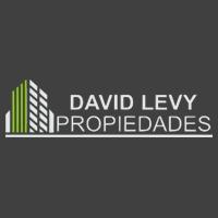 David Levy Propiedades